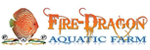 Fire Dragon – Aquatic Farm
