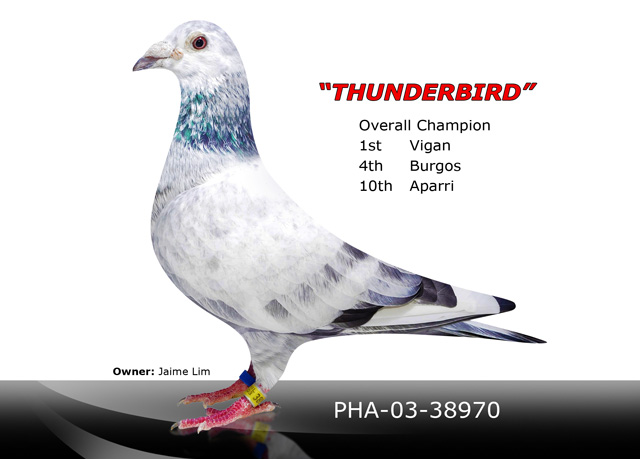 Thunderbird Advanced Hobbyist Genetic Breeding Station Inc