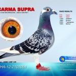 Carma Supra