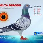 Delta Dragon