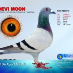 Devi Moon