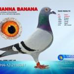 Nanna Banana