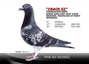 Crack 52 PHA-82-823952
